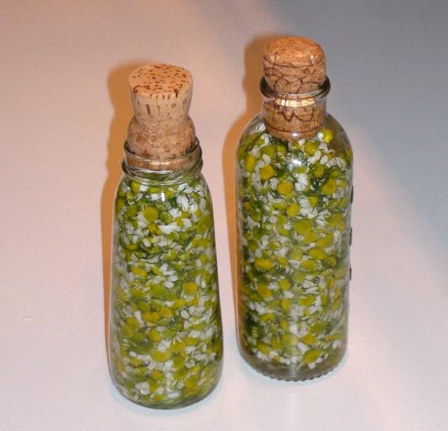 romashka-kupit
