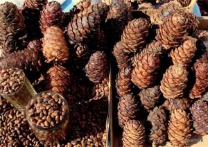отзывы о кедровом орехе