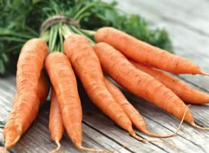 отзывы о морковки